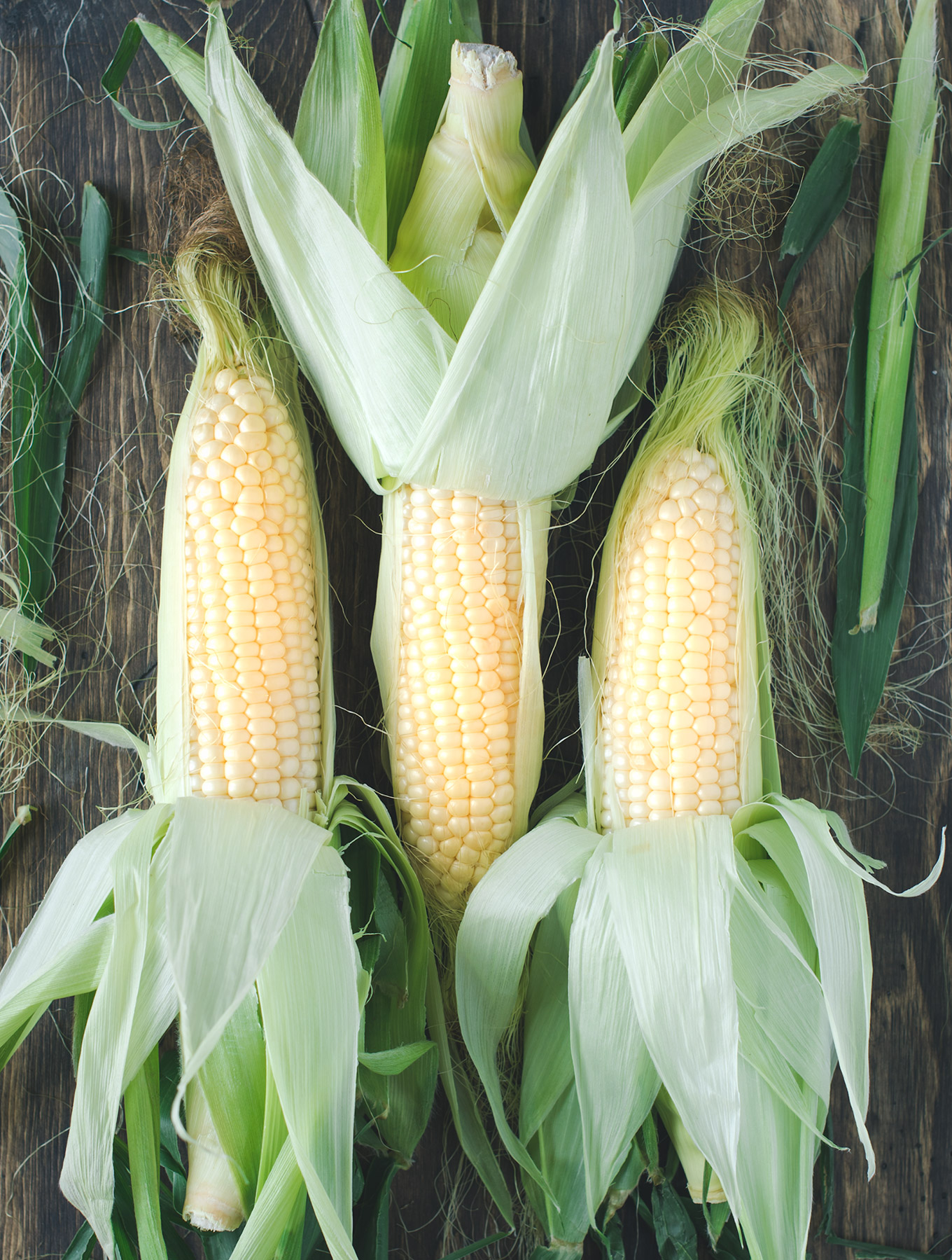 Stalks of fresh corn
