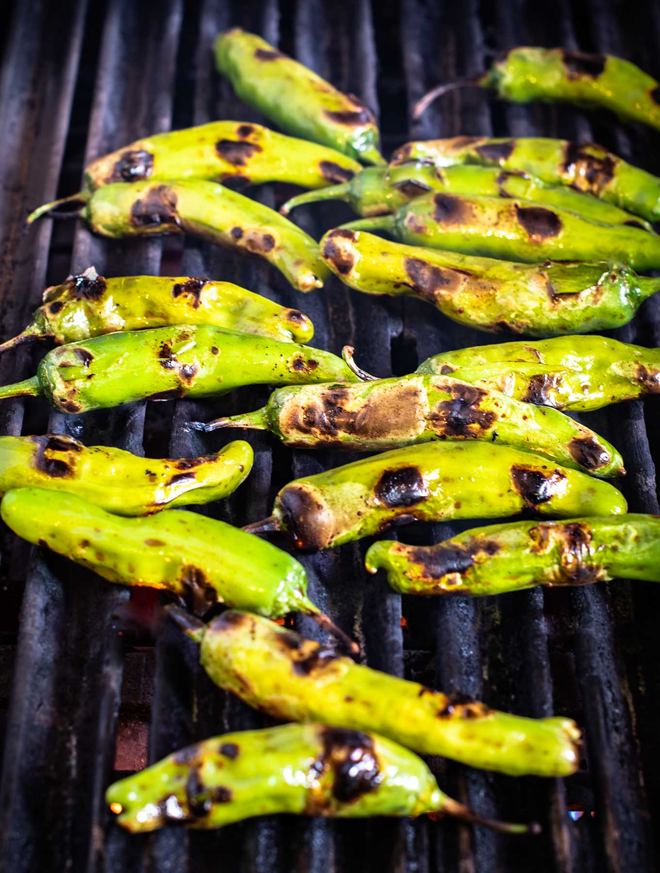 Shishito peppers on the grill