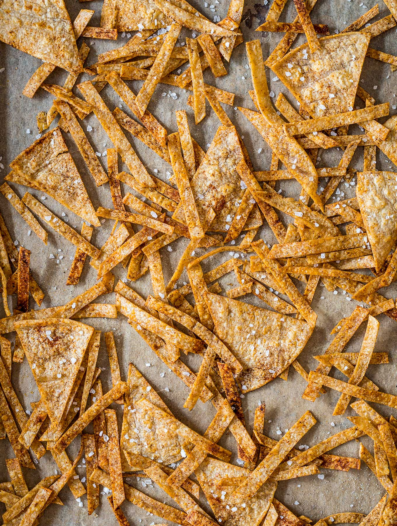 Tortilla strips and chips on a baking sheet