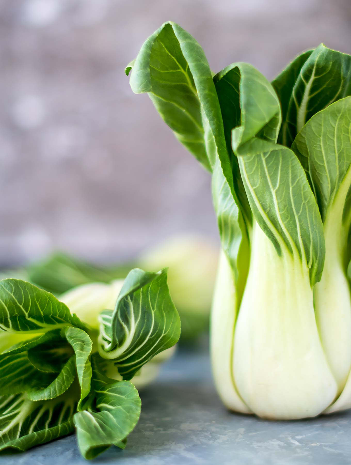 Bok choy on a gray surface