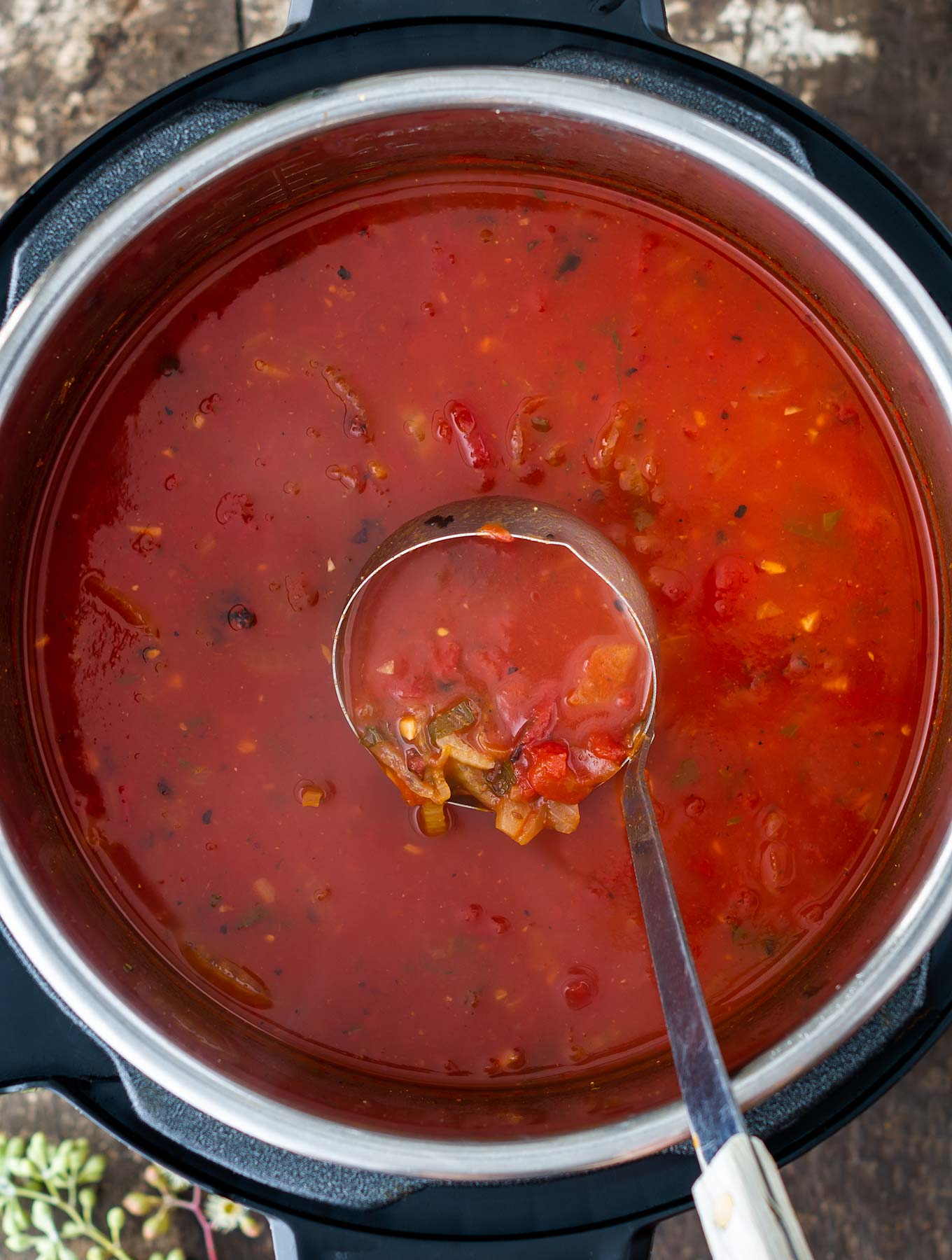 Overhead of Instant pot tomato fennel soup
