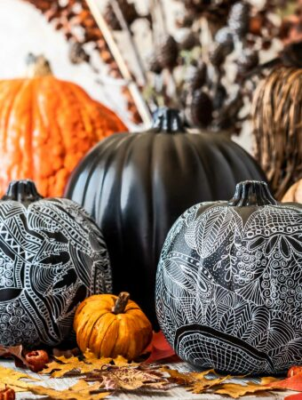 Grouping of zentangle pumpkins for fall